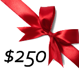 $250 GIFT CERTIFICATE PROMO CODE