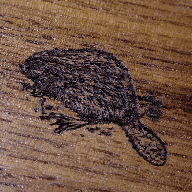 Gunstock Engraving Beaver