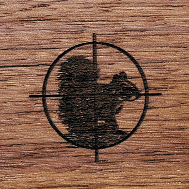 Gunstock Engraving Squirrel