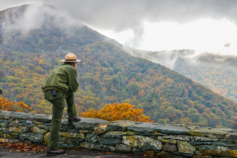 Park ranger overlooking valley