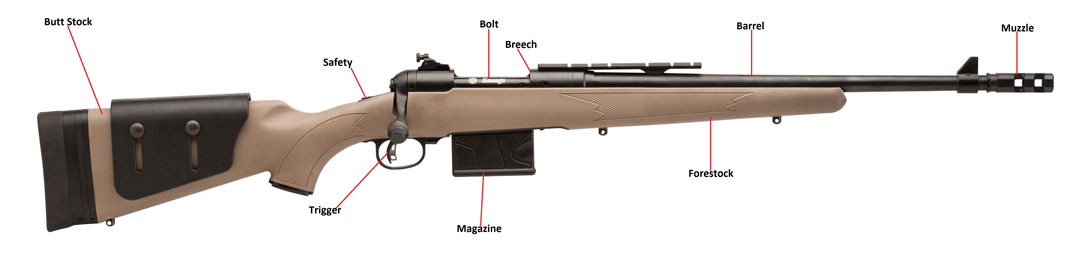 Firearm Identification Guide Parts of a Rifle